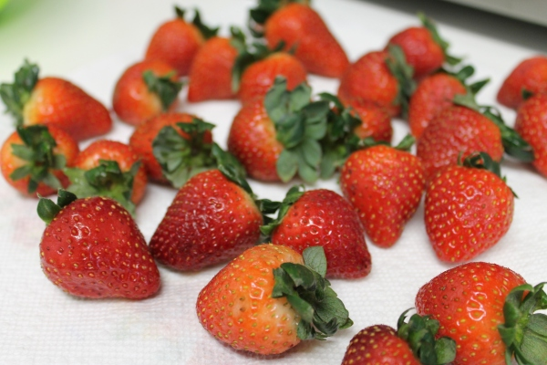 Nov 11, · How to Prepare and Use Strawberries. In this Article: Preparing strawberries for use Freezing strawberries Community Q&A 6 References. Strawberries are a traditional taste of summer; they are the jewel from which many a summer treat is enjoyed%().